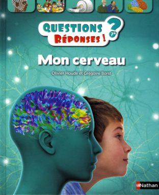Mon cerveau. Questions ? réponses !