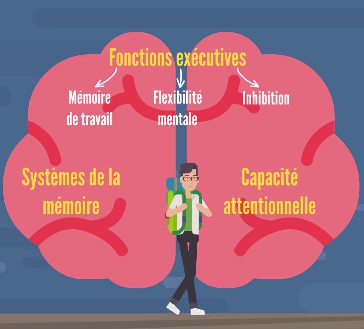 Que sont les sciences cognitives de l'apprentissage ?