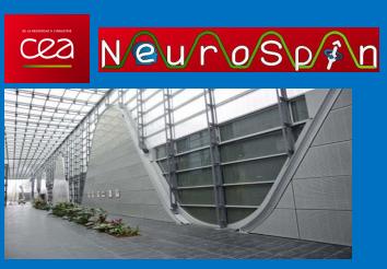Neurospin recherche des adolescents pour participer à une étude